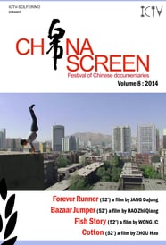 China Screen - Volume 8